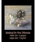 Hemp Seed Shower Gel + Body Lotion Naked Jõulupakkumine